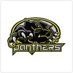 GCL19 Team Logo for Panthers
